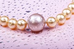 Wet pearls on pink. Close-up shots string of pearls on pink background Royalty Free Stock Photos