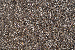 Wet pebble Royalty Free Stock Image