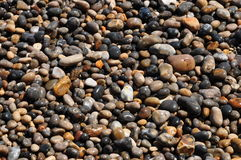 Wet pebble stone Stock Photos