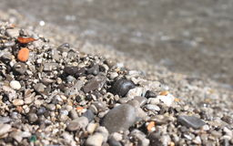 Wet pebble stones on the beach closeup Royalty Free Stock Photography