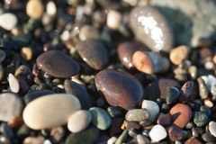 Wet pebble texture close up Royalty Free Stock Photography