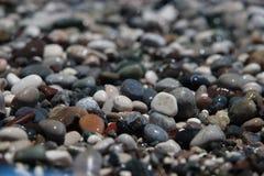 Wet pebbles. On sea coast Royalty Free Stock Photo