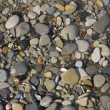 Wet pebbles. Color wet pebbles are on the seashore Royalty Free Stock Photos