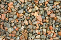 Wet pebbles. Stock Images