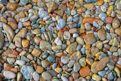 Wet pebbles Stock Photography