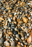 Wet pebbles. On the beach Royalty Free Stock Images