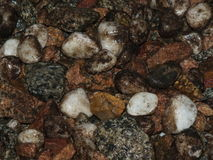 Wet pebbles as background Stock Photos