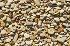 Wet pebbles background. Collection of wet pebbles on a rocky beach Stock Photos