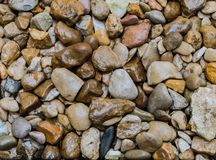 Wet pebbles. A background of wet pebbles of different shapes and size Royalty Free Stock Images