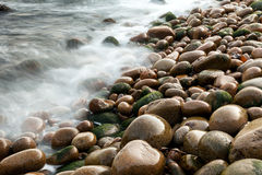 Wet pebbles on beach. With blurred ocean, Maine, USA Stock Images