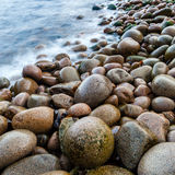 Wet pebbles on beach. With blurred ocean, Maine, USA Royalty Free Stock Photo