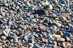 Wet pebbles on beach Stock Image