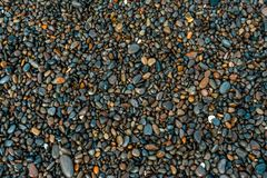 Wet pebbles on the beach on a summer day, background stock photography
