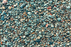 Wet pebbles on the beach. Texture smooth colored sea pebbles closeup Stock Photo