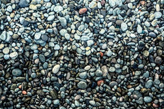 Wet pebbles on the beach. Texture smooth colored sea pebbles closeup Royalty Free Stock Images