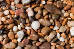 Wet pebbles Stock Photo