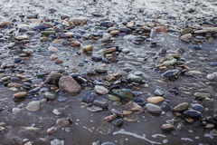 Wet pebbles and sand Royalty Free Stock Image