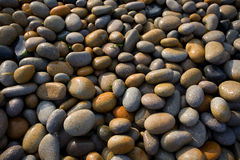 Wet pebbles sea Stock Image