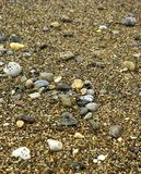 Wet pebbles upon  the shore Stock Image
