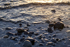 Wet pebbles at the sunset Stock Photography