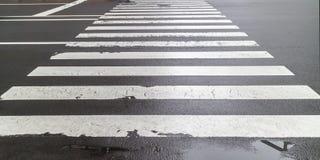 The wet pedestrian crosswalk on city street. Stock Photos