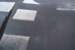 Wet pedestrian crosswalk after rain Stock Photo