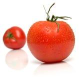 Wet perfect tomato. On the white. Full isolation, shallow DOF Royalty Free Stock Photo