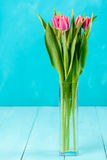 Wet Pink Tulip Flowers In Vase On Table Royalty Free Stock Photos