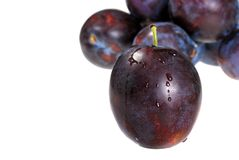 Wet plum closeup Royalty Free Stock Photos