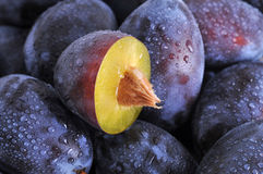 Wet plums Stock Photography