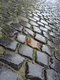 Wet from rain Flemish Belgian cobble stone Royalty Free Stock Image