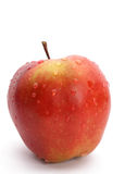 Wet red apple Royalty Free Stock Image