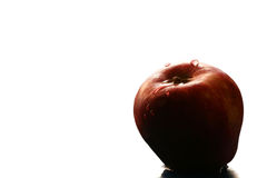 Wet red apple. Red apple with water drops on it Stock Image