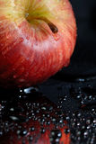 Wet red apple Royalty Free Stock Photo