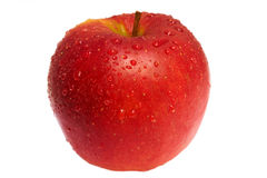 Wet red apple Stock Photography