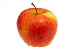 Wet red apple Stock Images