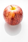 Wet red apple isolated on white Stock Image