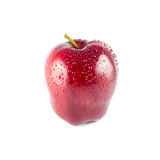 Wet red apple isolated Royalty Free Stock Photography