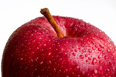 Wet red apple macro Stock Images