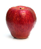 Wet Red Apple On White Stock Image