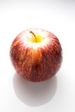 Wet red apple  on white Royalty Free Stock Photography