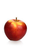 Wet red apple on a white background Royalty Free Stock Photo