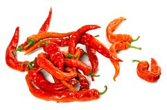 Wet red chili peppers Stock Images