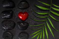 Wet red heart shaped stone with black basalt stones and green leaf, on black background Stock Images