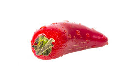 Wet Red Jalapeno hot pepper. On white background Stock Photography