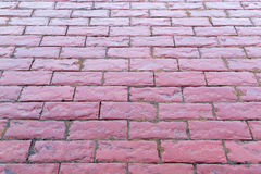 Wet Red Pink Cobbles Stones Path Royalty Free Stock Images