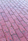 Wet Red Pink Cobblestone Path Royalty Free Stock Photos