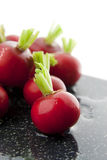 Wet red radishes Stock Photo
