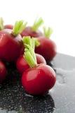 Wet red radishes stock photo