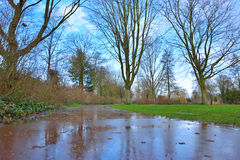 Wet red road in a park Royalty Free Stock Photography